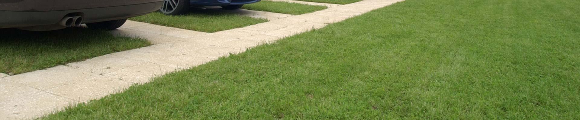 landscaping-bg